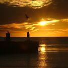 sunscape by emem
