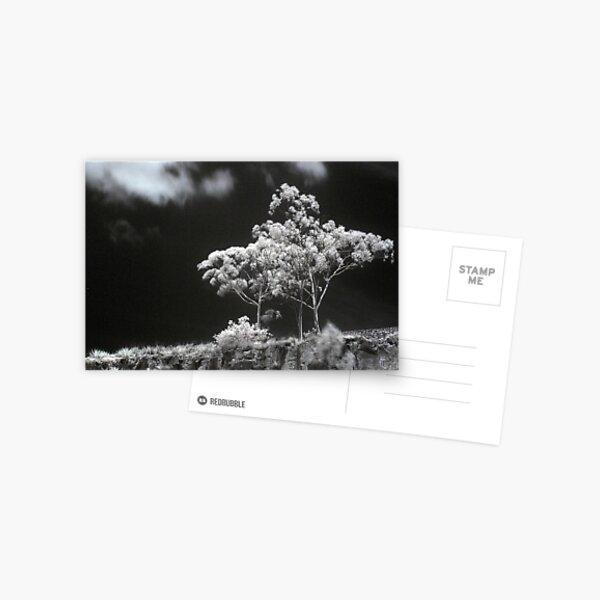 The White Spire Postcard