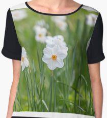 Beautiful daffodils on sunshine in springtime Chiffon Top