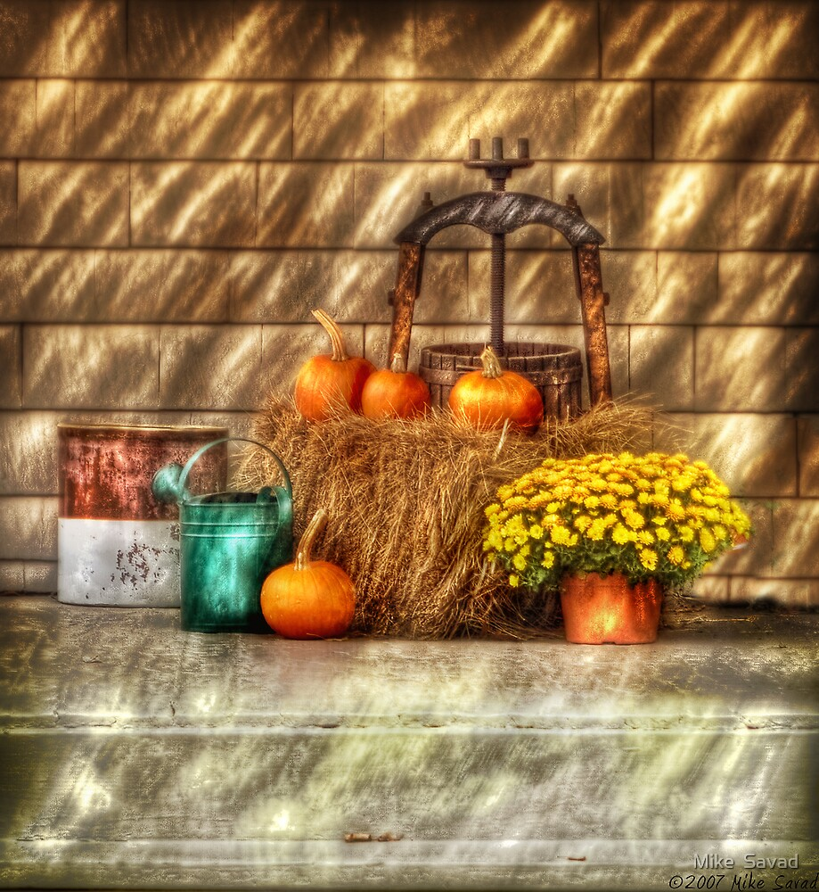 A still life with pumpkins by Michael Savad
