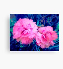 Candy Floss Flowers Canvas Print