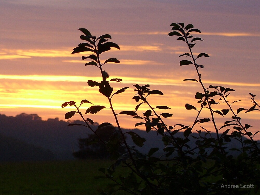 sunset at west wales by Andrea Scott