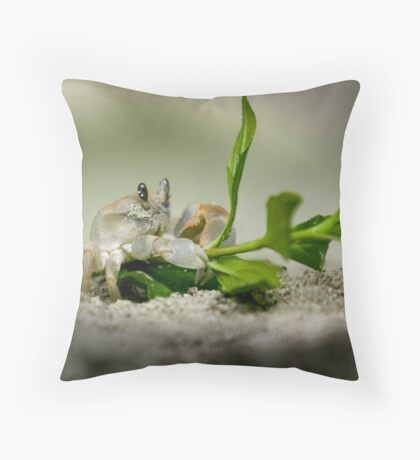 riding on Throw Pillow