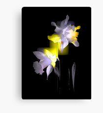 Cubist Daffodils Canvas Print