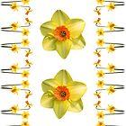 Daffodil Madness by Jon Delorme