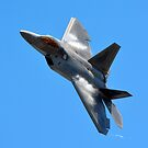 F-22 Raptor by Steven Squizzero
