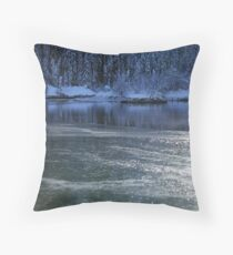Freezing Throw Pillow