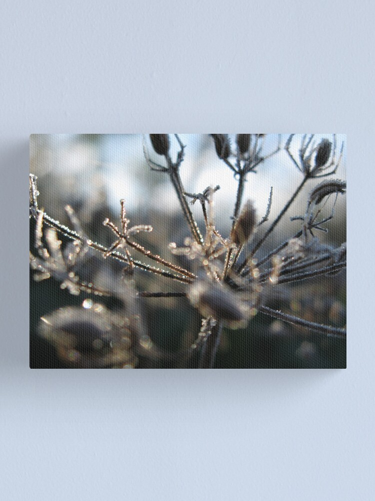 Alternate view of Frosty Stems Canvas Print