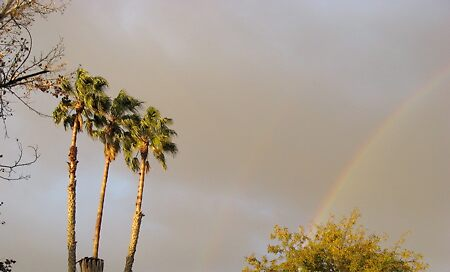 AFTER THE RAIN COMES THE SUN AND WITH IT A RAINBOW by umauma