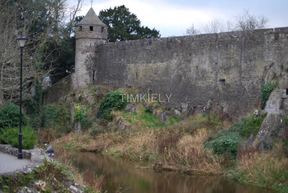 CAHIR CASTLE TOWER  ,IRELAND by TIMKIELY
