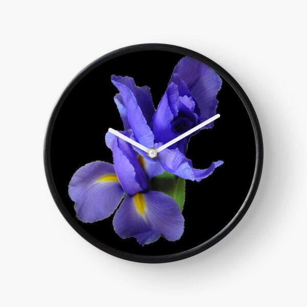 Incredible Iris on black Clock