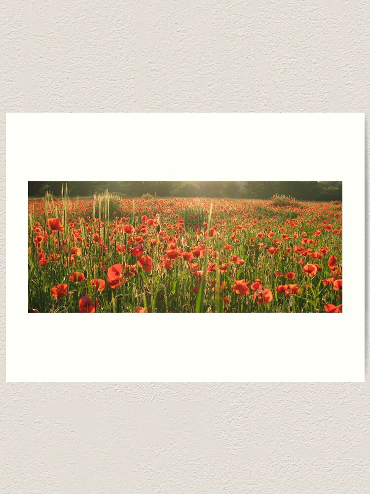 Alternate view of Poppy Field Art Print