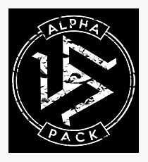 Alpha Pack - Teen Wolf Photographic Print
