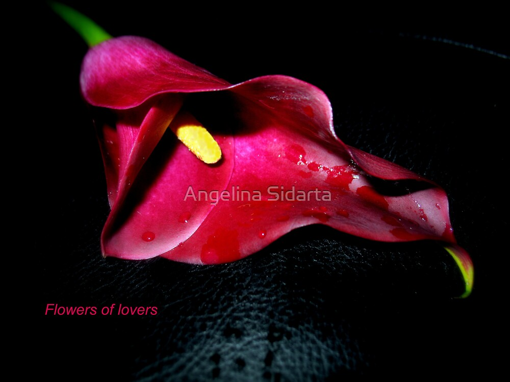 Flowers of lovers by Angelina Sidarta