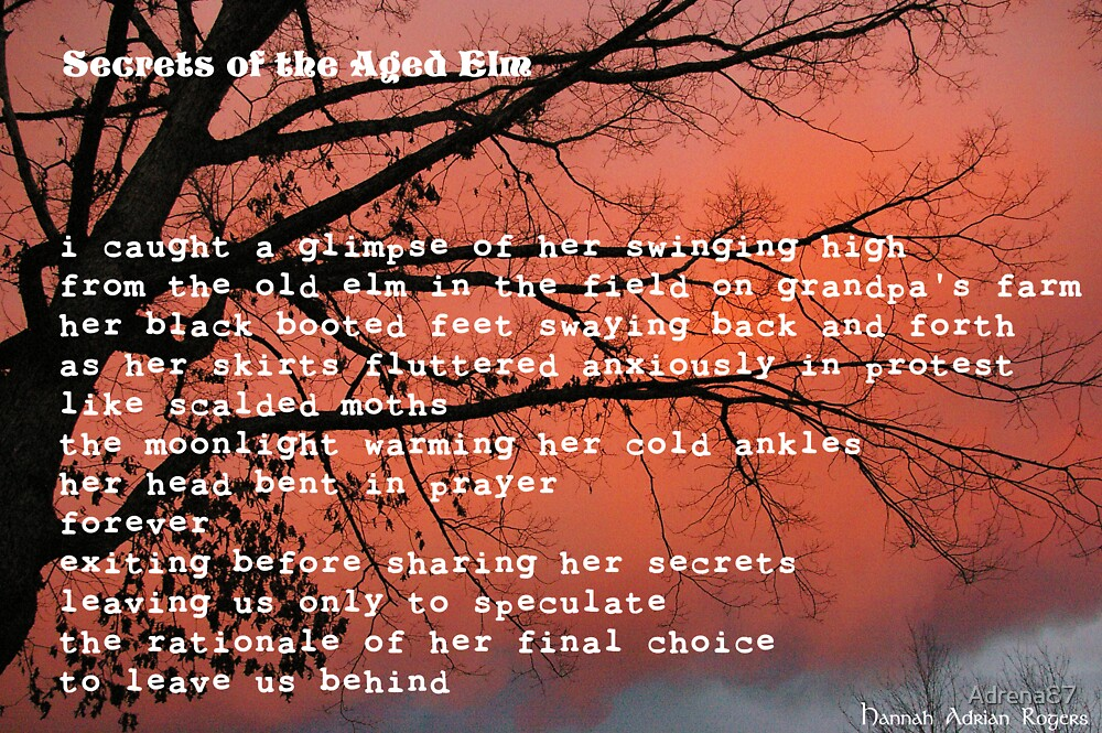 Secrets of the Aged Elm by Adrena87