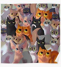 Lotsa cats Poster