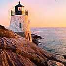Castle Hill Lighthouse with Seagull by Marianne Campolongo