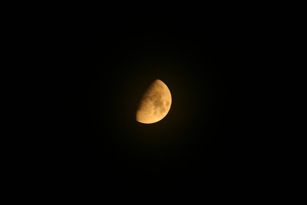 Carolina Moon by sommershots