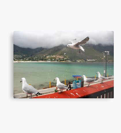 Incoming...Cape Town Central. Metal Print