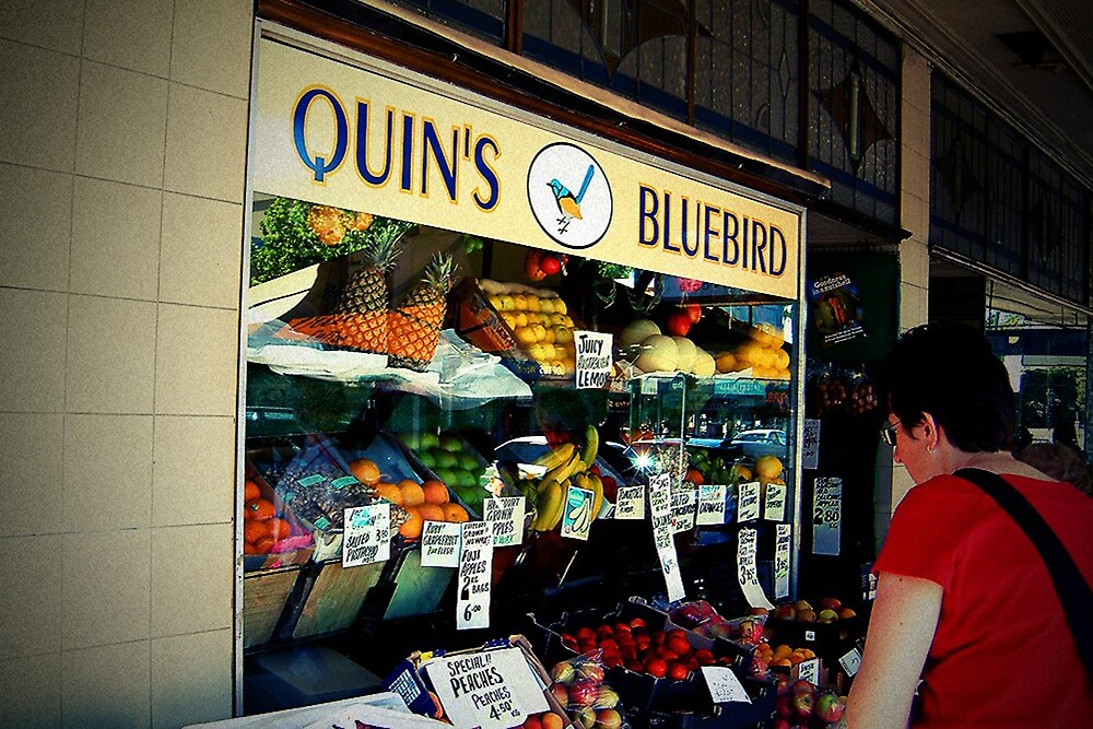 Quin's Bluebird by Marcia Luly