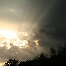 sunset 'n' sunrays by veins