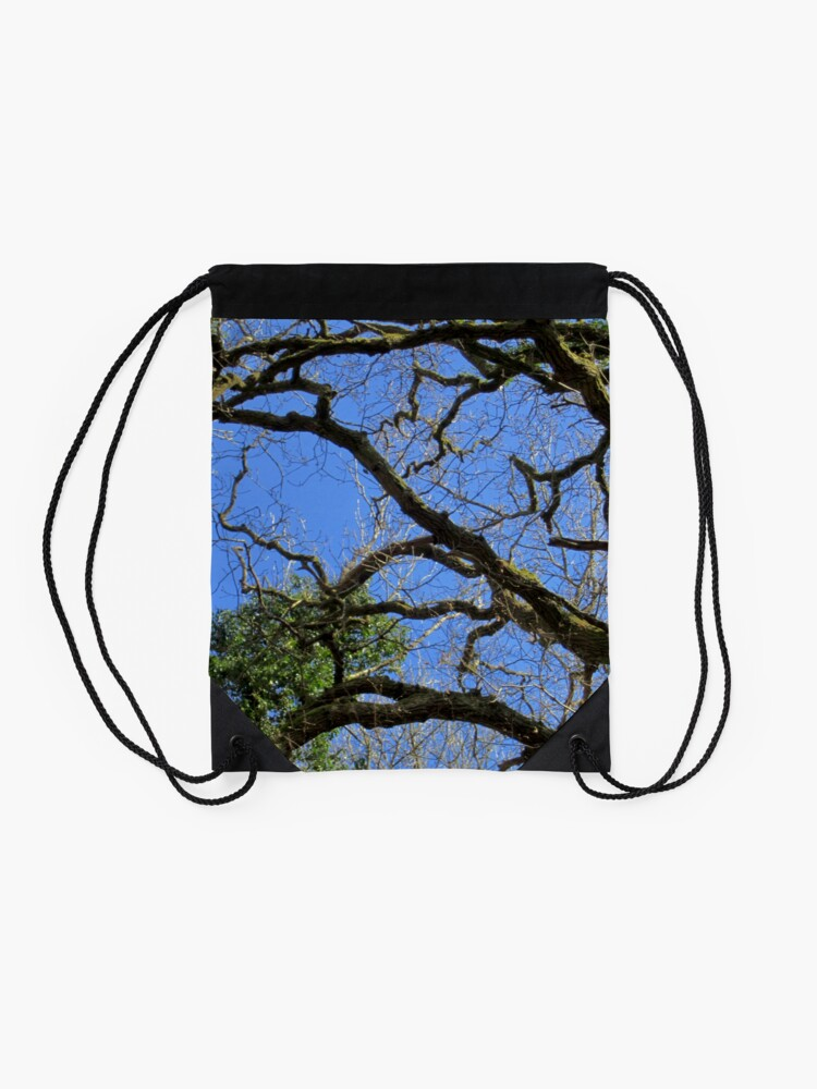 Alternate view of Forest Drawstring Bag