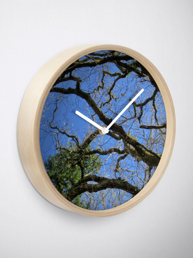 Alternate view of Forest Clock
