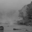 Ohiopyle Falls by Paul Kavsak