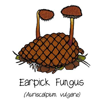 Earpick Fungus by Immy