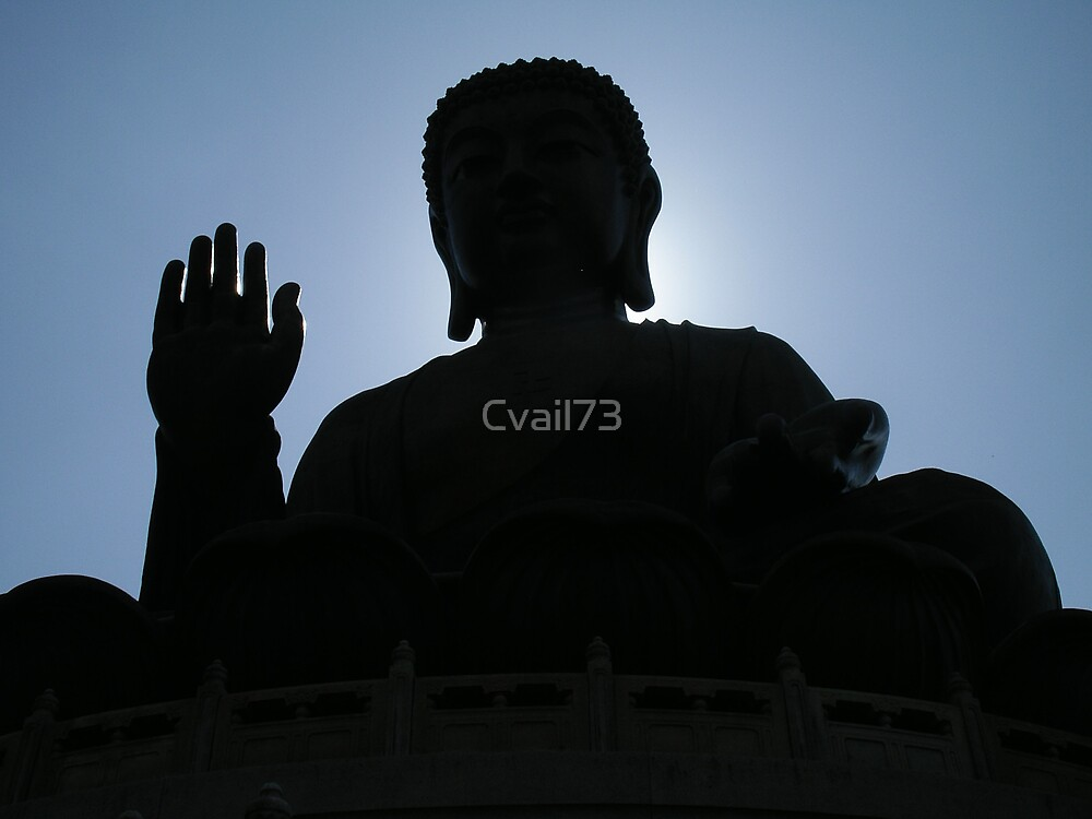 Buddha says hello by Cvail73