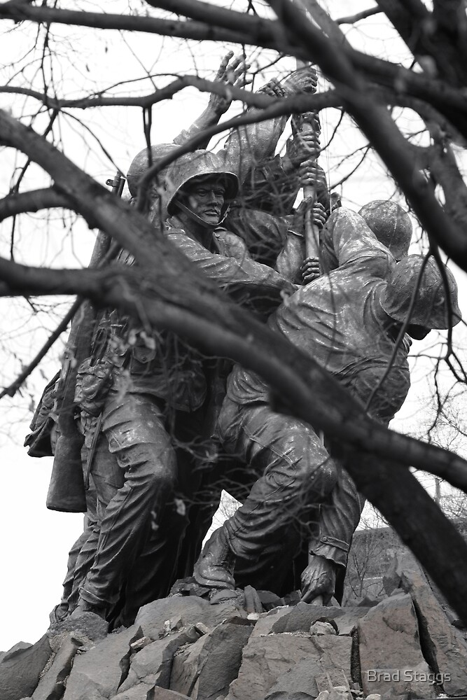 Iwo Jima Memorial through the Trees by Brad Staggs