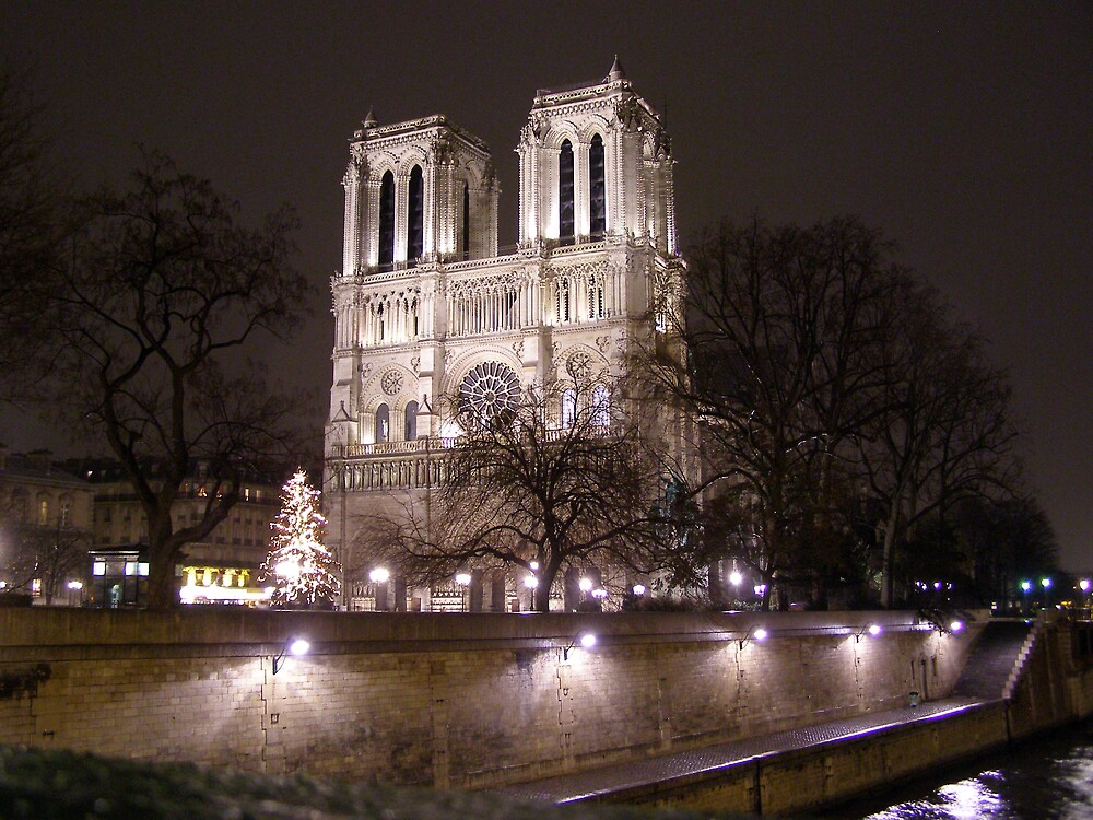 Notre Dame Cathedral by lmcp 27