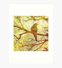 Honey Eater & Banksia 3  Art Print
