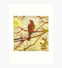 Honey Eater & Banksia # 1  Art Print