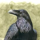 Proud Raven - Watercolor by skidgelstudios