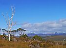 View from Black Bluff Range by Graeme  Hyde