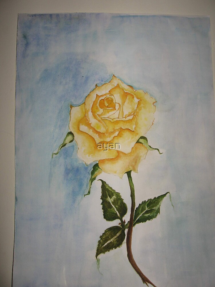 rose Size 29x42 cm by ayan