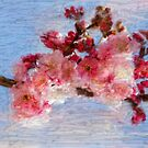 Cheery Cherry Blossoms by RobynLee
