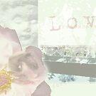 Love Remembers by Rebekah  McLeod