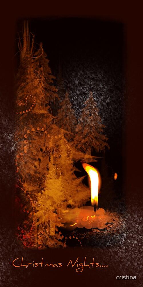 Christmas nights.... by cristina