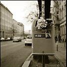 flowers by grayscaleberlin