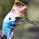Cassowary  by cs-cookie