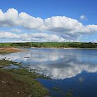 Colliford Reflections, Bodmin Moor  by lezvee