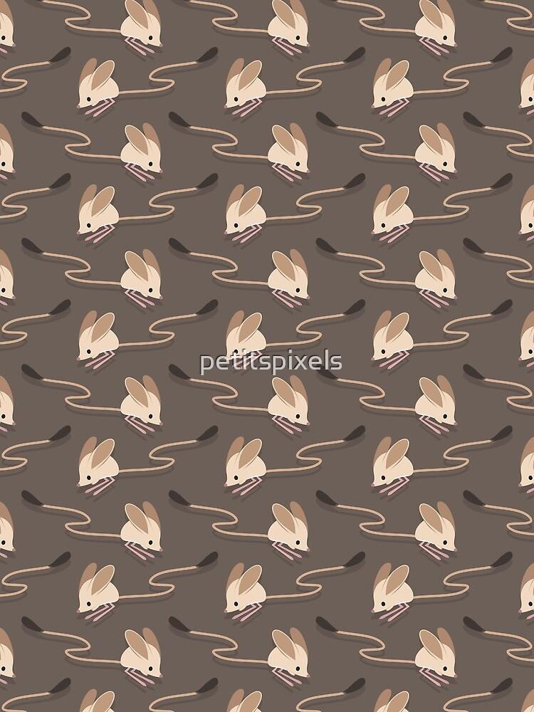 Long eared jerboas by petitspixels