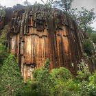Sawn Rocks - Mount Kaputar National Park by Michael Matthews