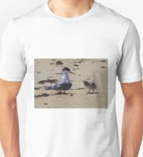 Greater Crested Tern and Chick T-Shirt