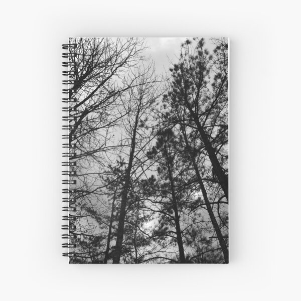 Carving Shadows into an Anemic Sky  Spiral Notebook