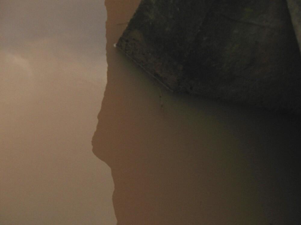Upon reflection by David Rozario