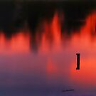 Sunset Reflected in a Pond by © Joe  Beasley IPA