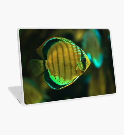 A fish Laptop Skin